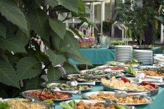 festa_barbecue_giardino_6